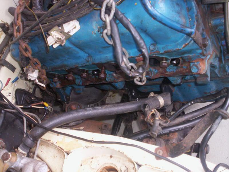 1966 230S fintail - what V8 should I put in?-100_9736.jpg