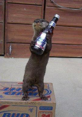 Name:  3%20animal%20beer.jpg