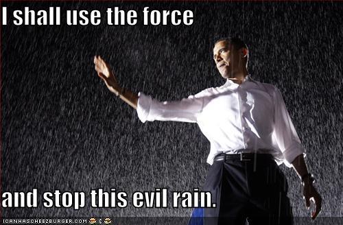 Name:  bo-rainforce.jpeg Views: 43 Size:  39.9 KB