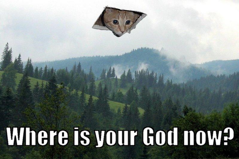 post your pussy pix-catgod.jpg