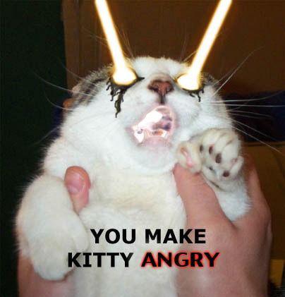 Name:  f-Angry-Kitty-3055.jpg Views: 107 Size:  27.9 KB