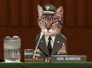 Name:  f-Commander-Cat-3086.jpg Views: 108 Size:  29.1 KB