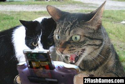Name:  f-Gamer-Cat-3349.jpg Views: 110 Size:  74.8 KB