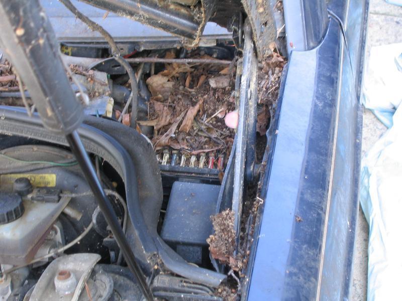 Mercedes Benz 190 Fuse Box | Wiring Diagram on