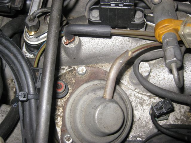 Vacuum Hose Help Needed - 92 500sl  119 960