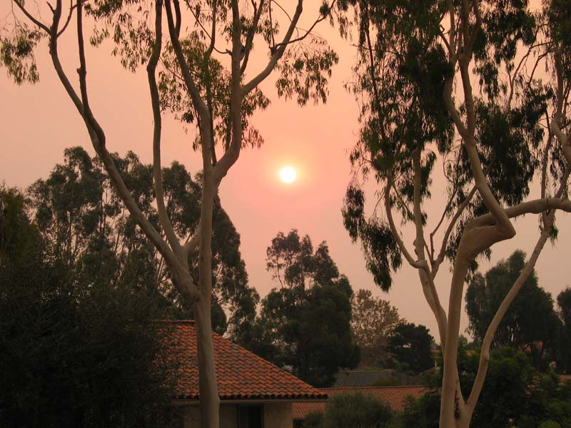 Any body else caught in the San Diego Fires?-img_3958resize.jpg