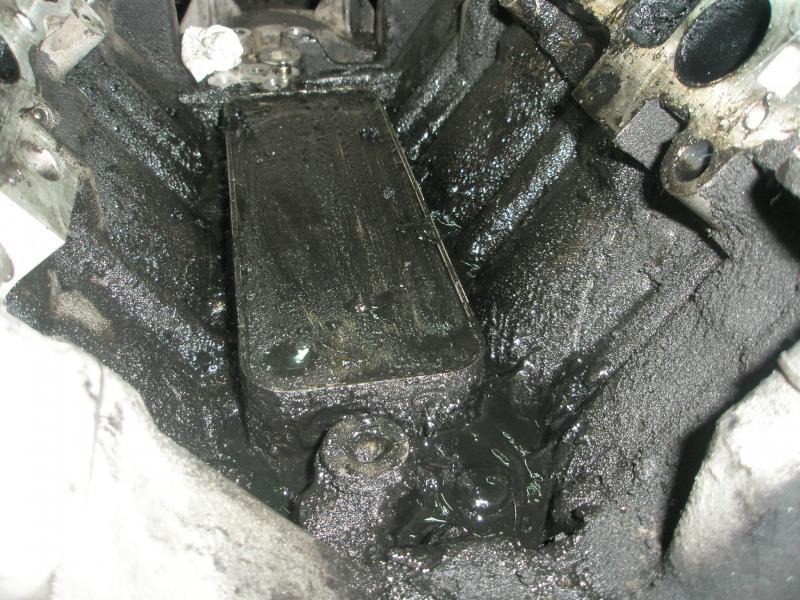 371658d1303665572t-oil-leak-e280-cdi-2008-mod-p4190138.jpg