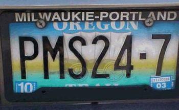 Name:  pms-license-plate.jpg Views: 78 Size:  15.9 KB