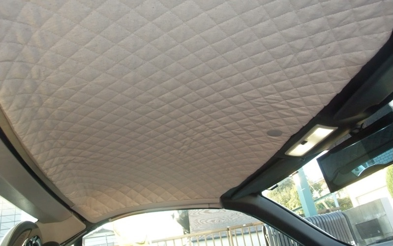 Car Interior Roof Kitchen And Living Space Interior