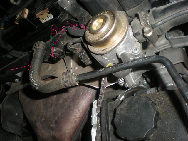 D Oil Leak Oil Pump Gasket Seal Sabrina C Edit