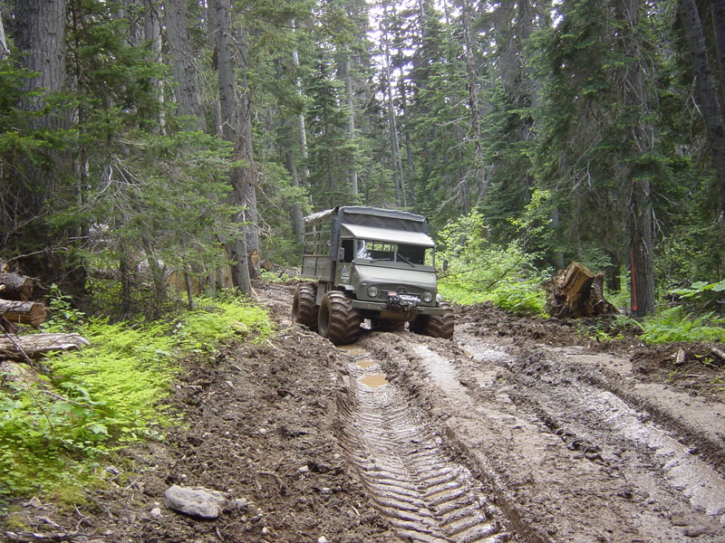 "Post your favorite ""mog in mud"" shots-unimog-20in-20the-20mud.jpg"