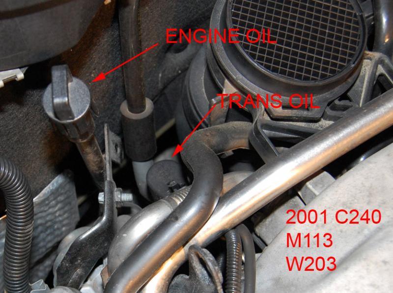 2004 Clk 500 Transmission Fluidfilter Question Mercedesbenz Forumrhbenzworldorg: Transmission Dipstick Location At Cicentre.net