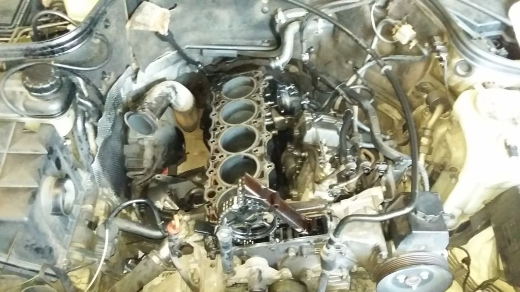 Where/How to read timing (OM606 engine)   Mercedes-Benz Forum